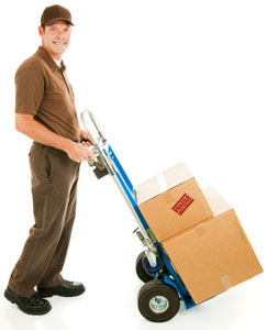Components of an online shipping policy