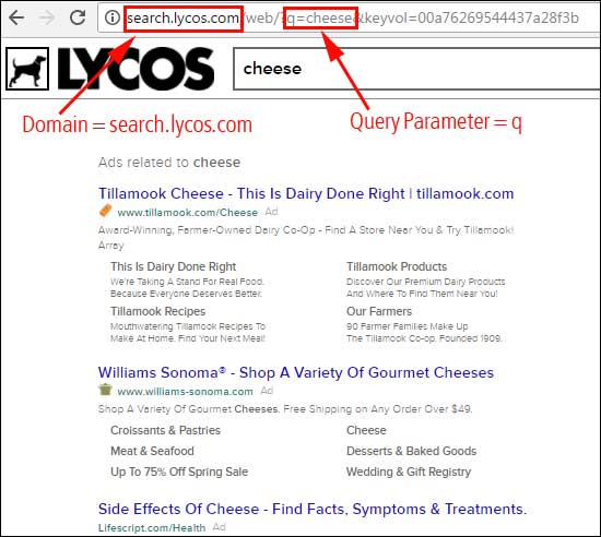 Find the domain name and query parameter for a search engine